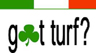 IRISH TURF LOGO